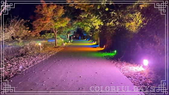 moominpark-adventurewalk12